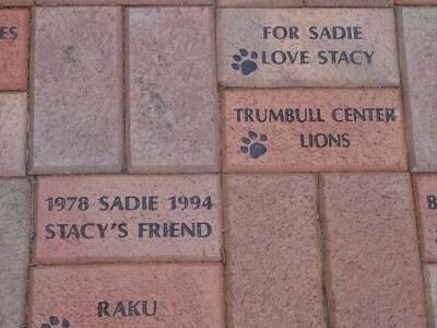 Brick Paws Way Sample Image