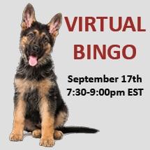 Virtual Bingo September 17th Image